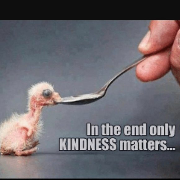 Other - Kindness is not for sale